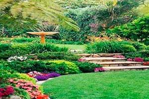 NORTON SERVICIOS - Diseño de jardín y áreas verdes