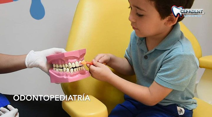 CEFADENT - ODONTOPEDIATRIA