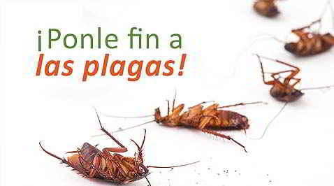 PLAGAFIN- Productos biodegradables