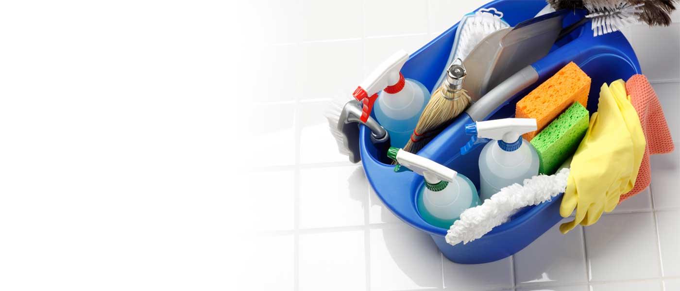PROFESIONALES EN LIMPIEZA - Conservación y limpieza de inmuebles