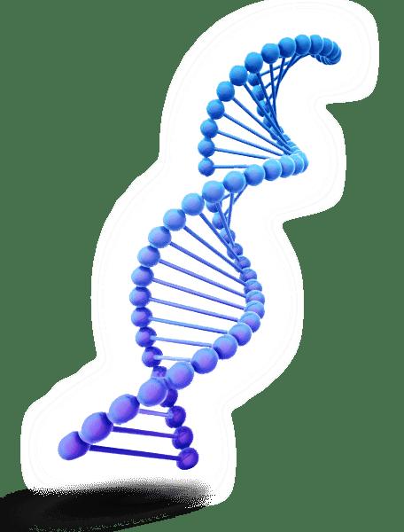 ADN EN CASA - prueba de paternidad