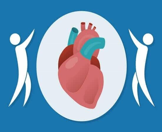 DR. HECTOR J. HERNANDEZ PERALES MEDICO CARDIOLOGO Y ECOCARDIOGRAFISTA - Estudio de cardiología