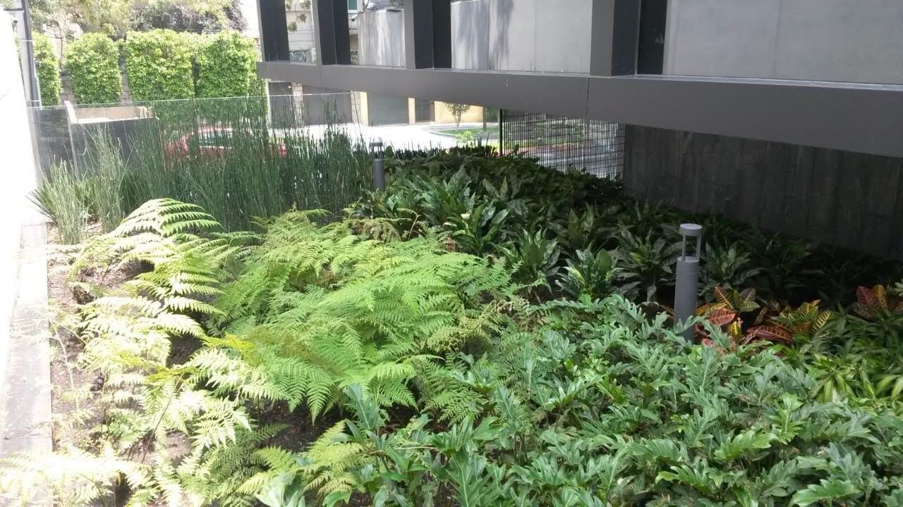 JARDINES UNIDOS MEXICANOS-remodelación de jardines residencial e industrial