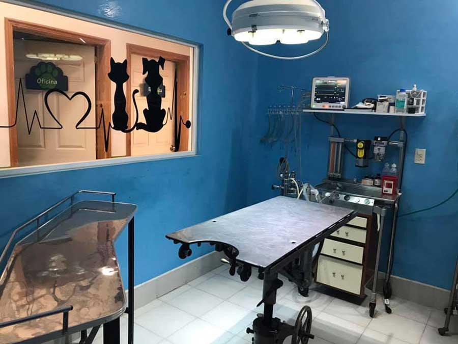 INTERMÉDICA VETERINARIA DE ESPECIALIDADES METEPEC - cirugía animal