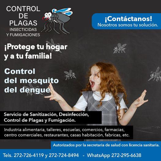 CONTROL DE PLAGAS INSECTICIDAS Y FUMIGACIONES – Fumigaciones en casa habitación