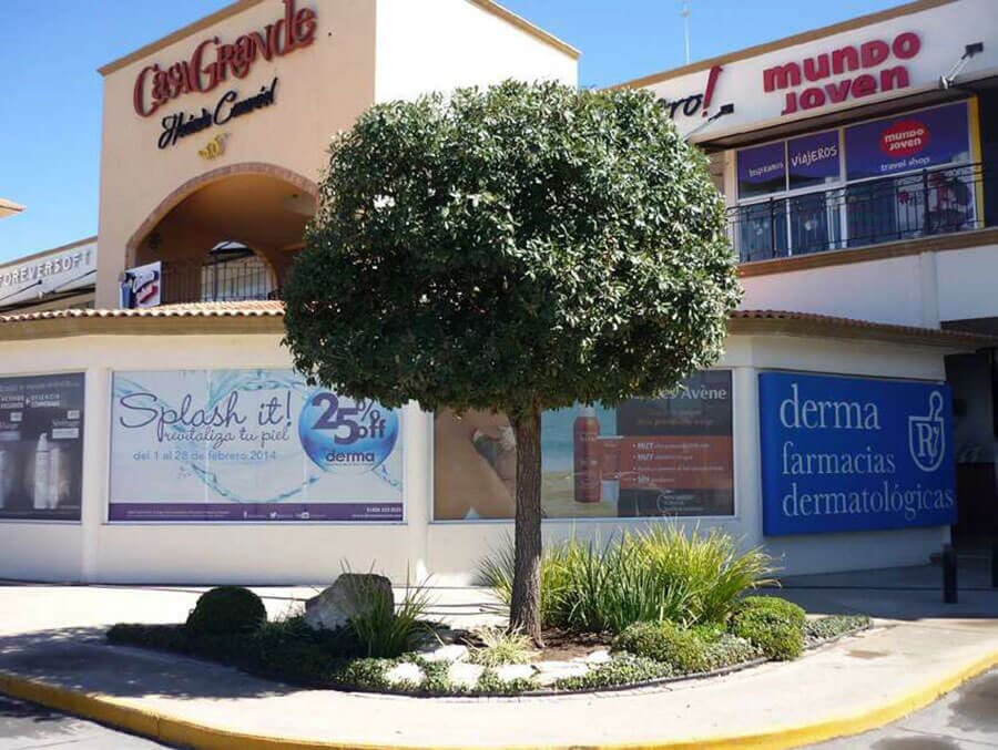 GARDEN CENTER - PLAZA CASA GRANDE SALTILLO