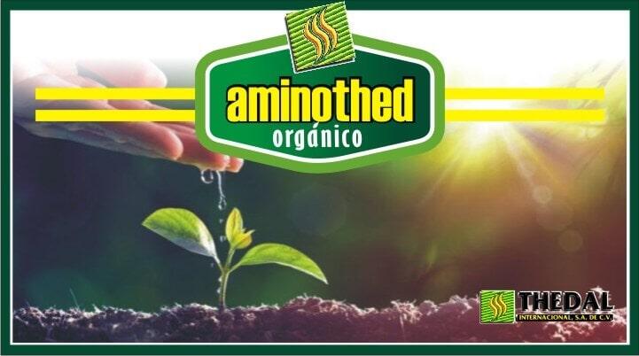 THEDAL INTERNACIONAL SA DE CV – aminothed organico
